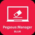 Leica PegasusManager Blur Erase