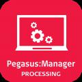 Leica PegasusManager - Processing