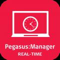 Leica PegasusManager - Real-Time